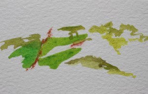 Colour touches the fields  - watercolour, paint - Approx 30 mm x 70 mm